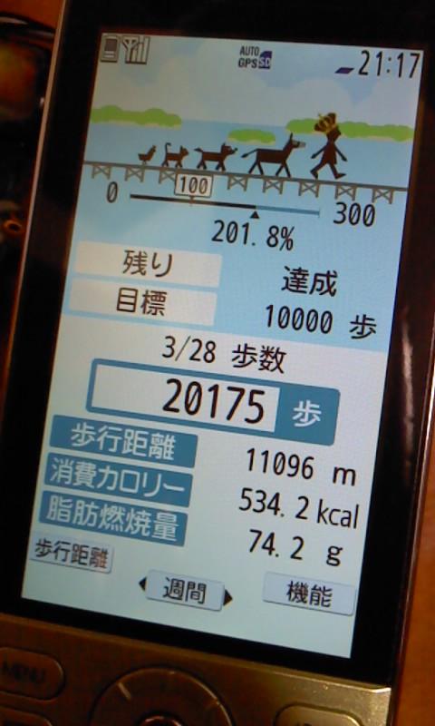 20100328 歩数計.JPG