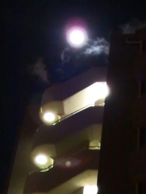 20120831 Blue Moon.jpg