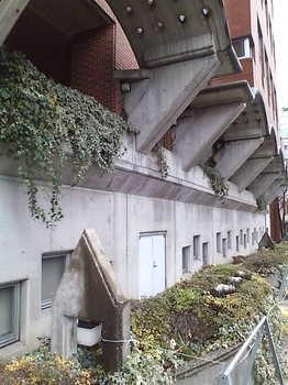 20090322 明治学院4.JPG