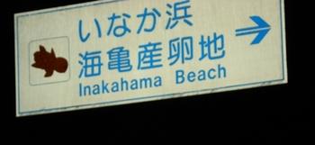 20090518 39いなか浜ウミガメ産卵地1.JPG