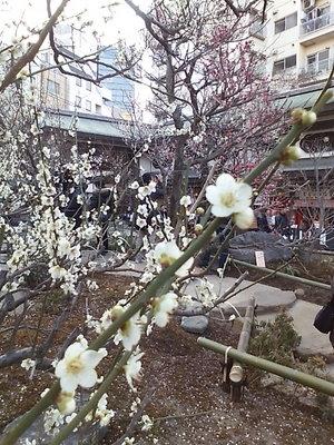 20100220 湯島天満宮8.JPG