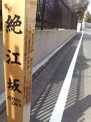 20100221 南麻布絶江坂.JPG
