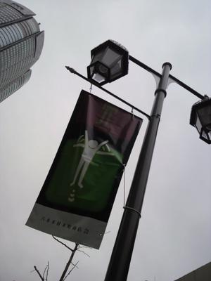 20100328 六本木商店街Flag3.JPG