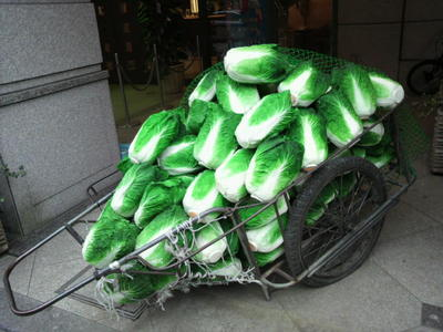 20100328 六本木アート4チェ・ジョンファ緑の白菜.JPG