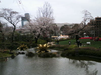 20100328 六本木アート6ヒルズ毛利庭園桜2.JPG