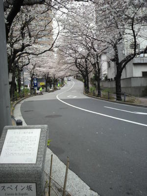 20100328 アークヒルズ桜まつり6.JPG