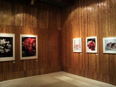 20110130 中川幸夫展2.jpg