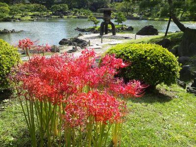 20121013 旧芝離宮庭園1.JPG