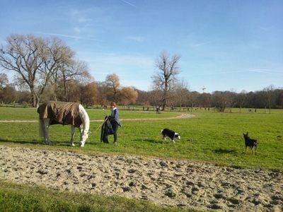 20121125 4ミュンヘン英国庭園2.JPG